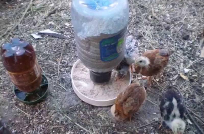 Как сделать поилку для куриц своими руками из бутылки