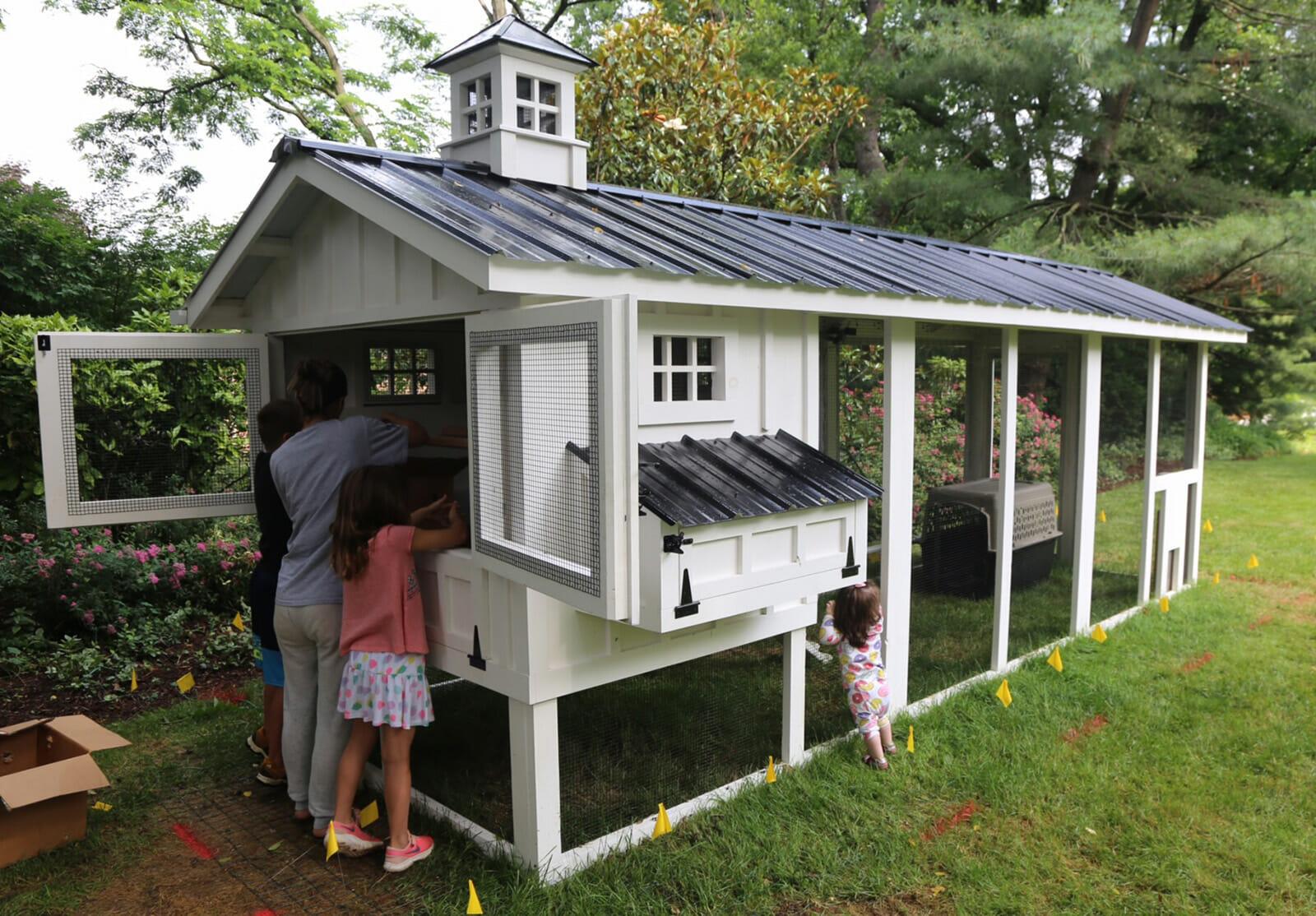 Мобильный курятник фото на лето для дачи и сада
