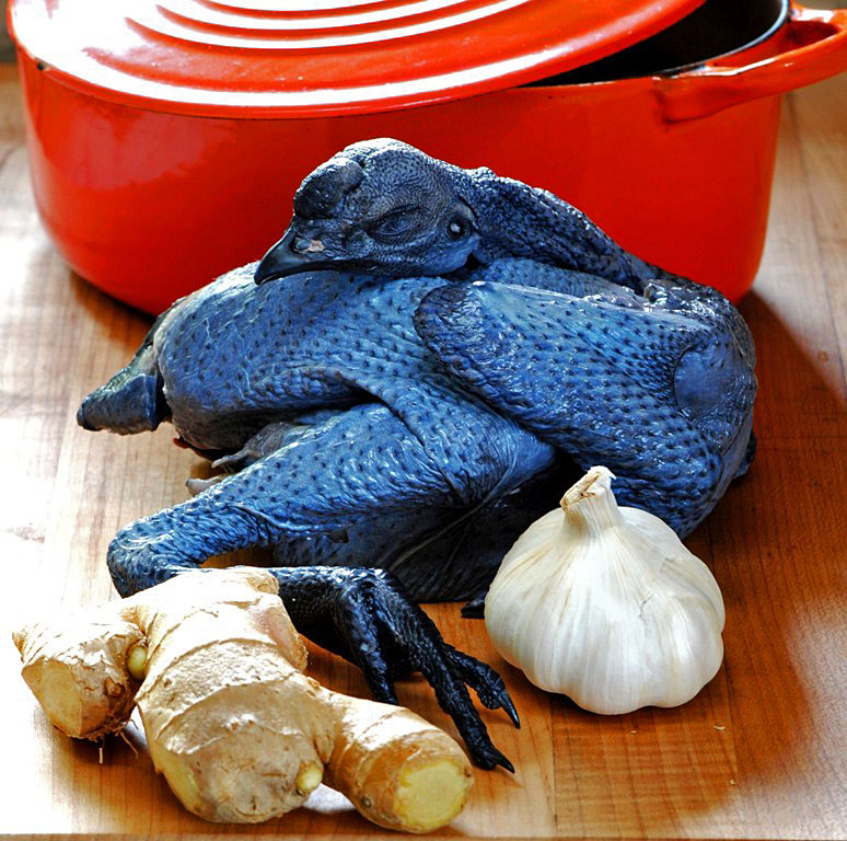 Рецепт нежного филе черной китайской шелковой курицы