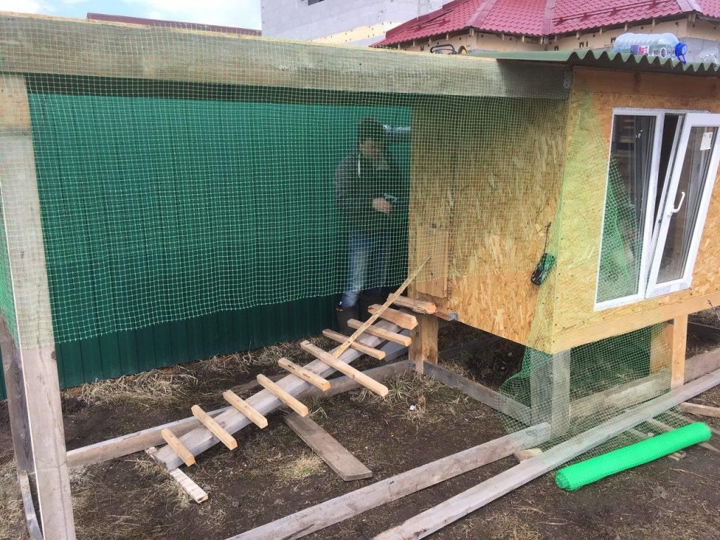 Зимний курятник своими руками 45 фото пошагово