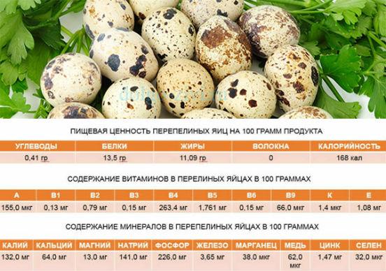 Сколько яиц в день несет перепелка?