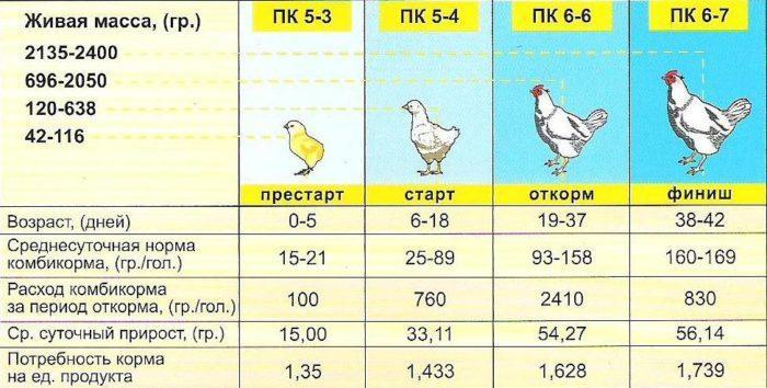 Сказ о продолжительности жизни кур и петухов