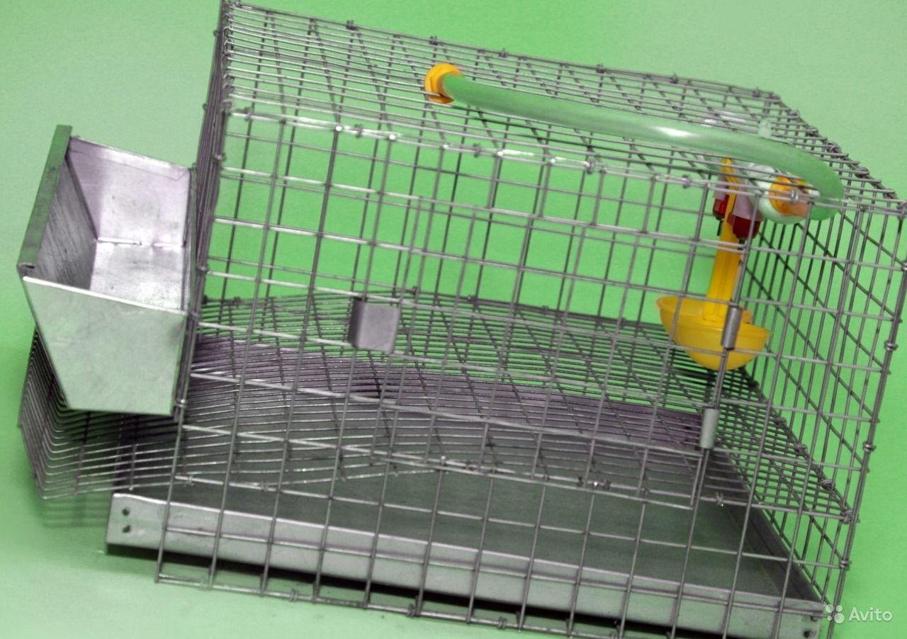 Клетка для перепелов своими руками – размеры, пошаговое изготовление