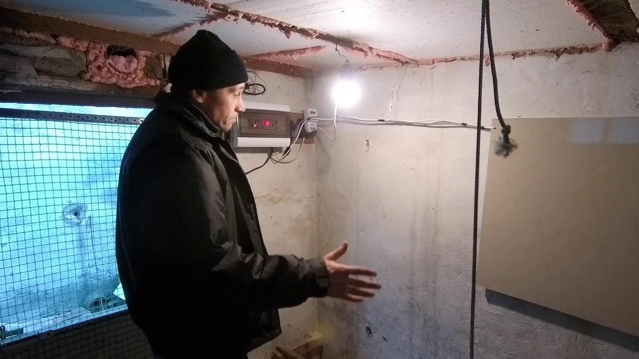 Отопление курятника зимой: какой обогреватель лучше, экономичнее и безопаснее? Рейтинг лучших вариантов