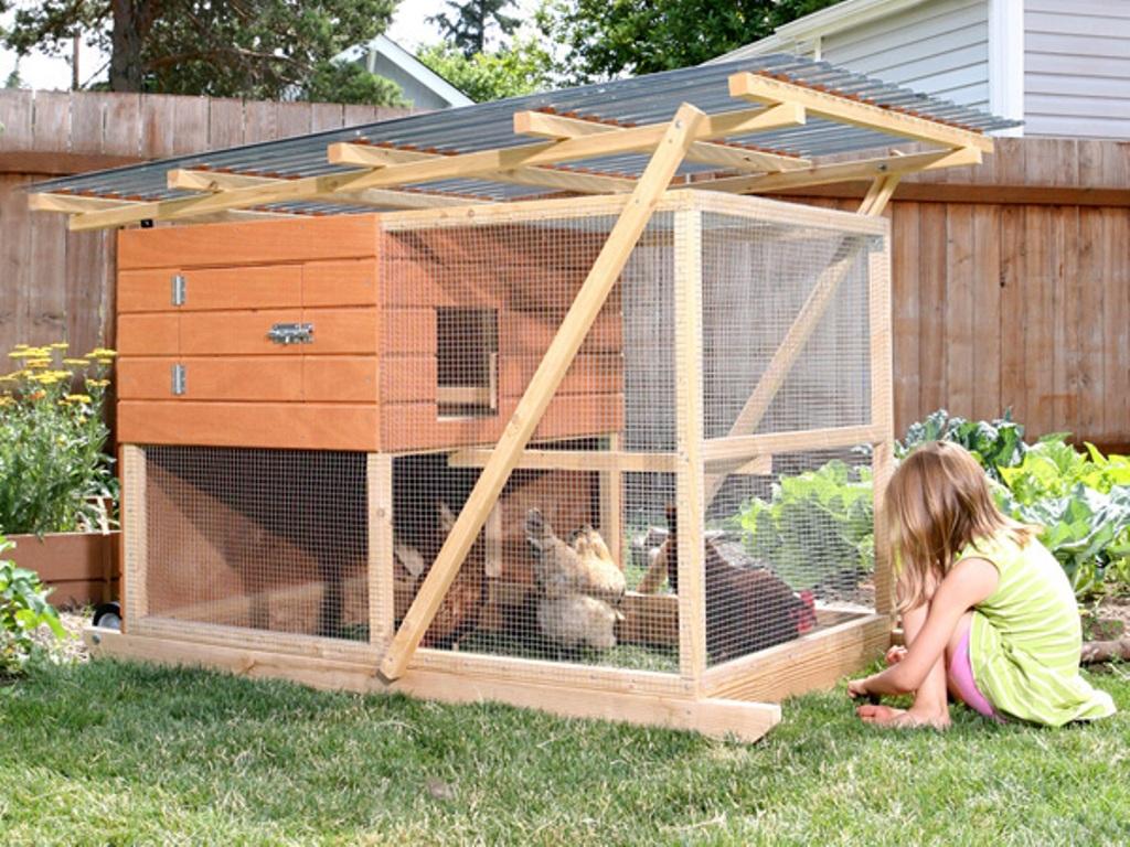 Как построить летний курятник своими руками