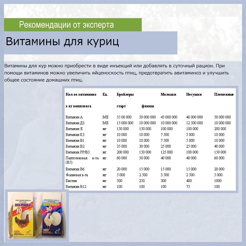 Какие витамины и добавки нужны несушкам зимой