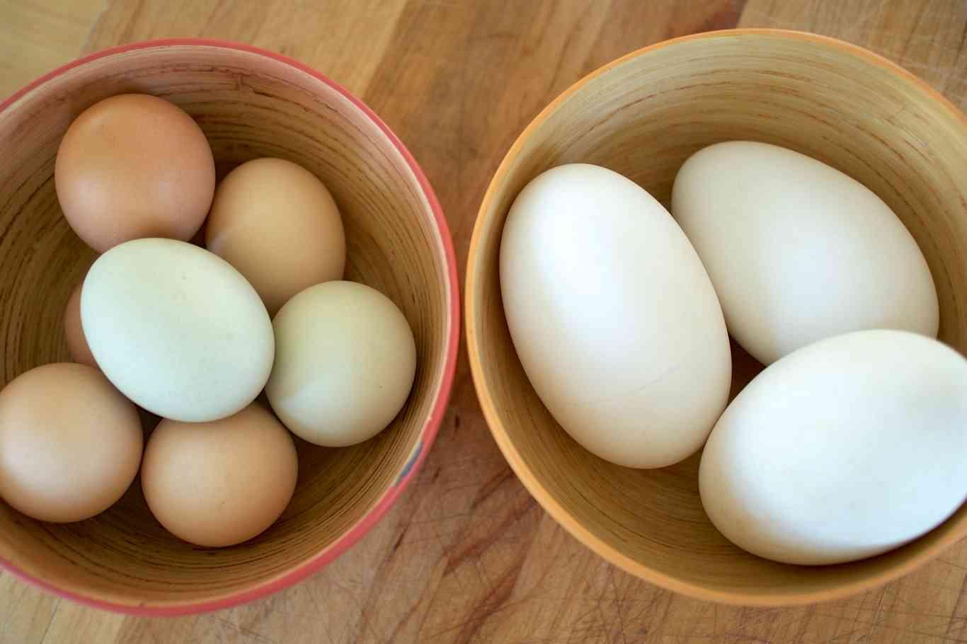 Яйца, которые стоит попробовать