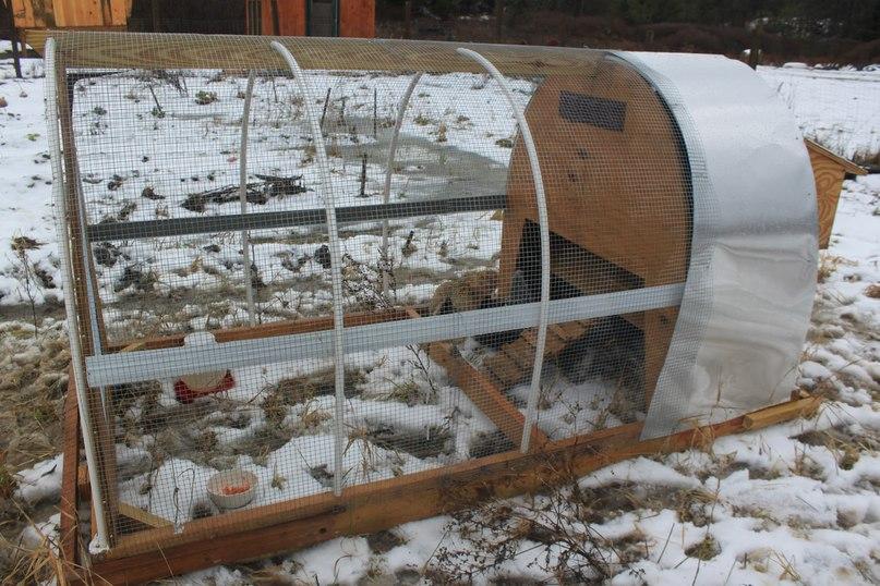 Курятник в теплице из поликарбоната зимой и летом