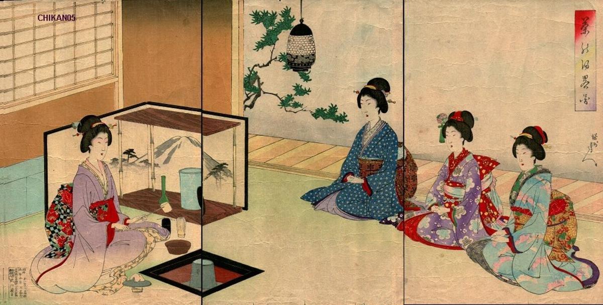 Ямато гункай - бойцовая порода кур. Описание, содержание, кормление и инкубация