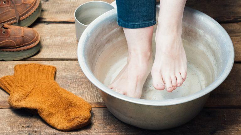 Зола для кур-несушек: зачем она нужна и как ее давать?