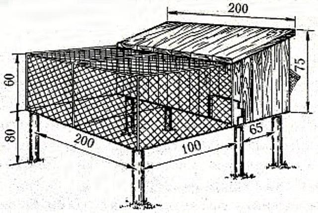 Вольер для фазанов своими руками – инструменты, материалы, инструкции по строительству