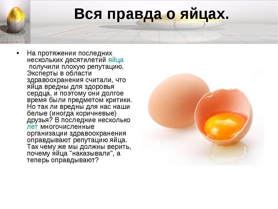 Почему свежие куриные яйца воняют как тухлые?