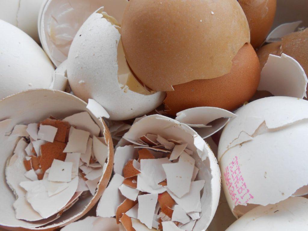 Способы применения яичной скорлупы