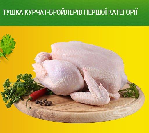 Гибро-6 - мясной кросс кур. Описание, характеристики, содержание и кормление, отзывы