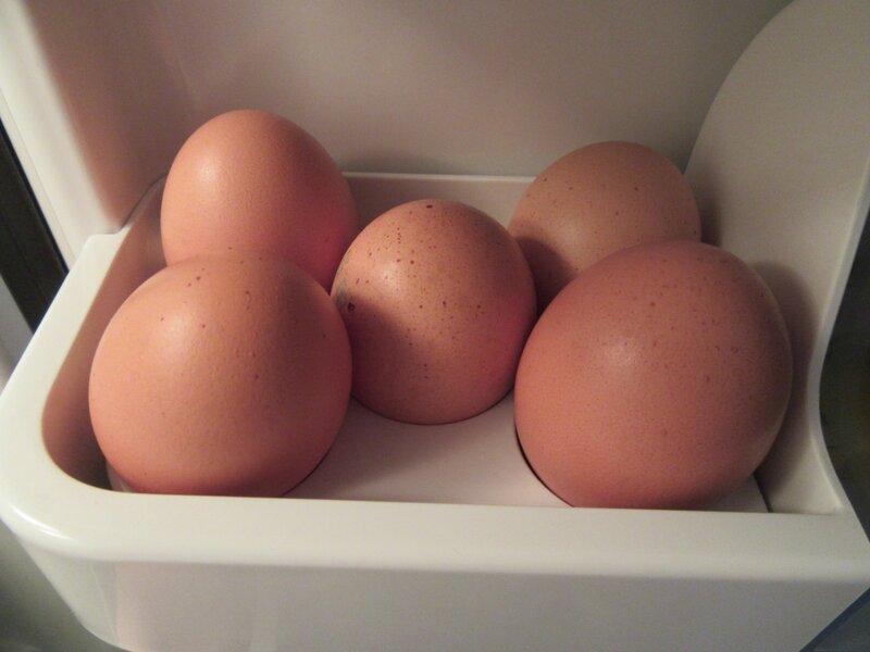 Можно ли мыть куриные яйца перед хранением
