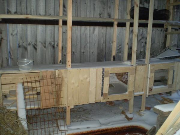 Гусятник своими руками – инструменты, материалы, инструкции по строительству