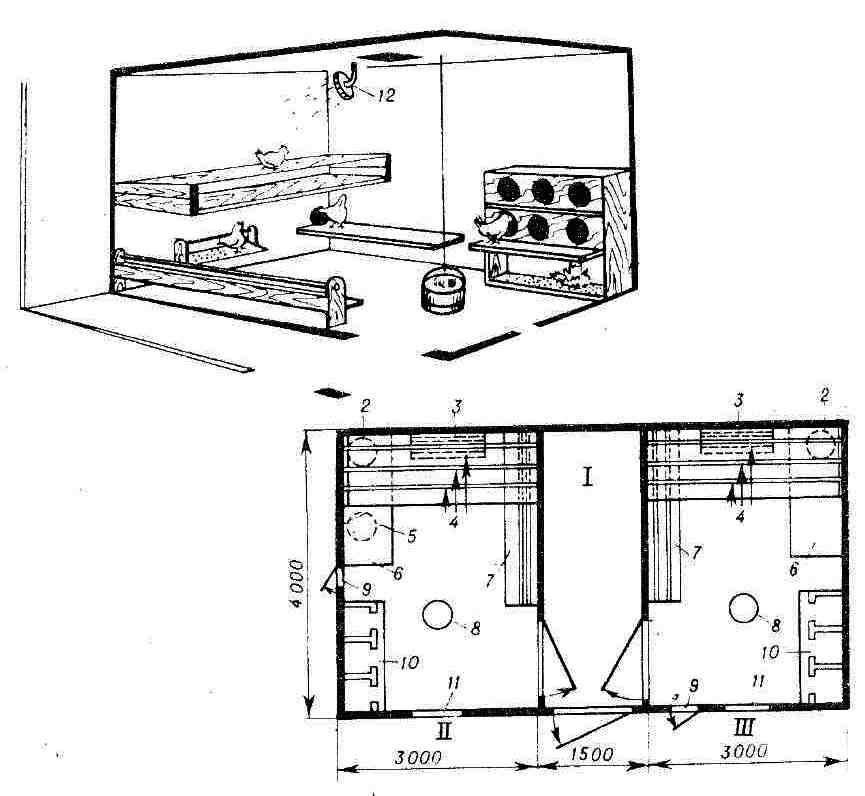 Как построить курятник на 20 кур своими руками по чертежу