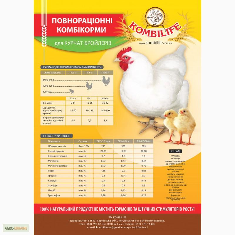 Кормление кур-несушек и бройлеров на птицефабриках