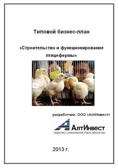 Как открыть куриную ферму? Регистрация бизнеса, закупка несушек и бройлеров, расходы и рентабельность