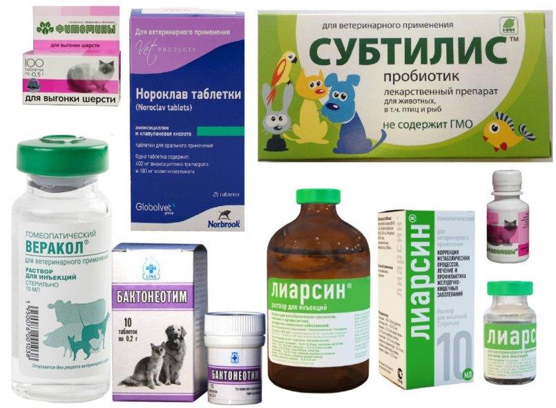 Доксилокс: инструкция по применению антибактериального препарата в ветеринарии