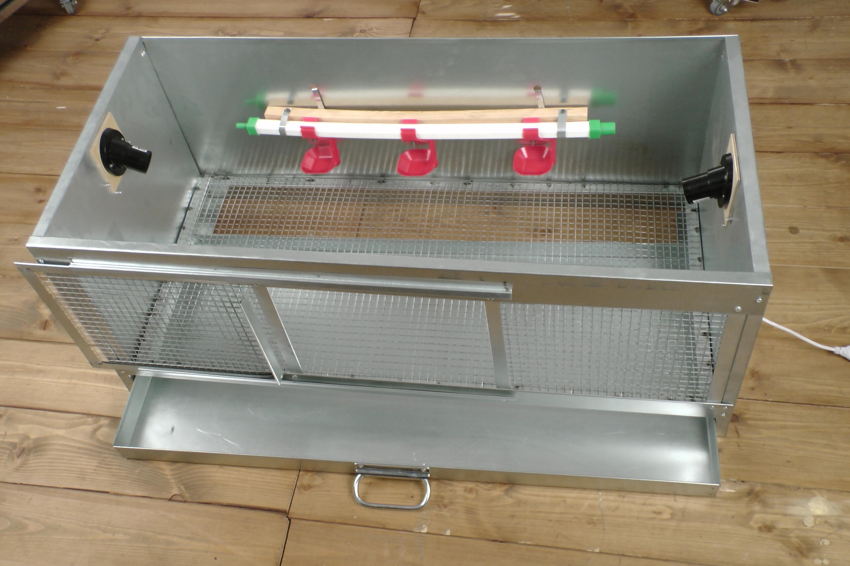 Как оборудовать брудер для цыплят