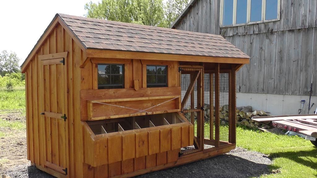 Пошаговая инструкция постройки курятника на даче своими руками