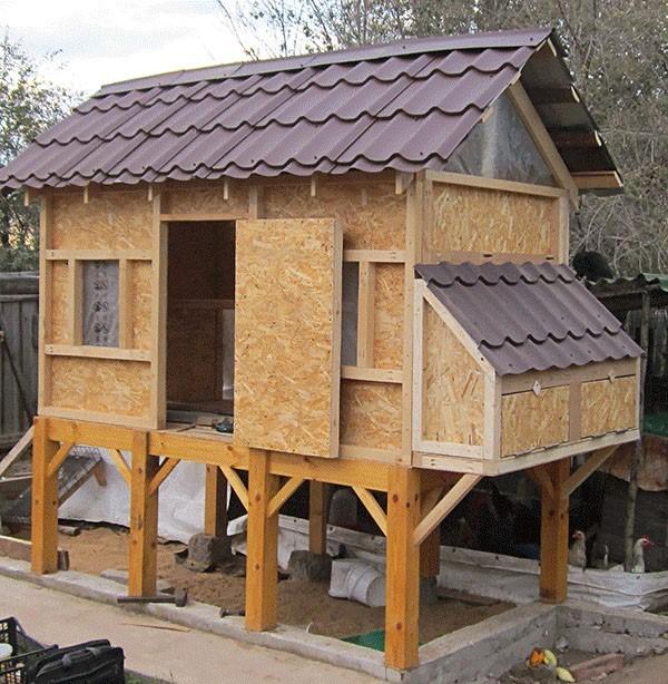 Строительство теплого зимнего курятника своими руками