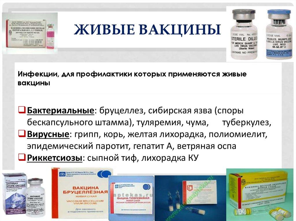 Метапневмовирус у птиц и вакцинация живыми вакцинами