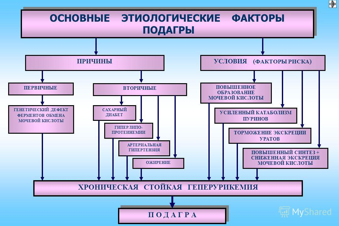 Подагра у кур: симптомы, лечение, применяемые препараты, меры профилактики