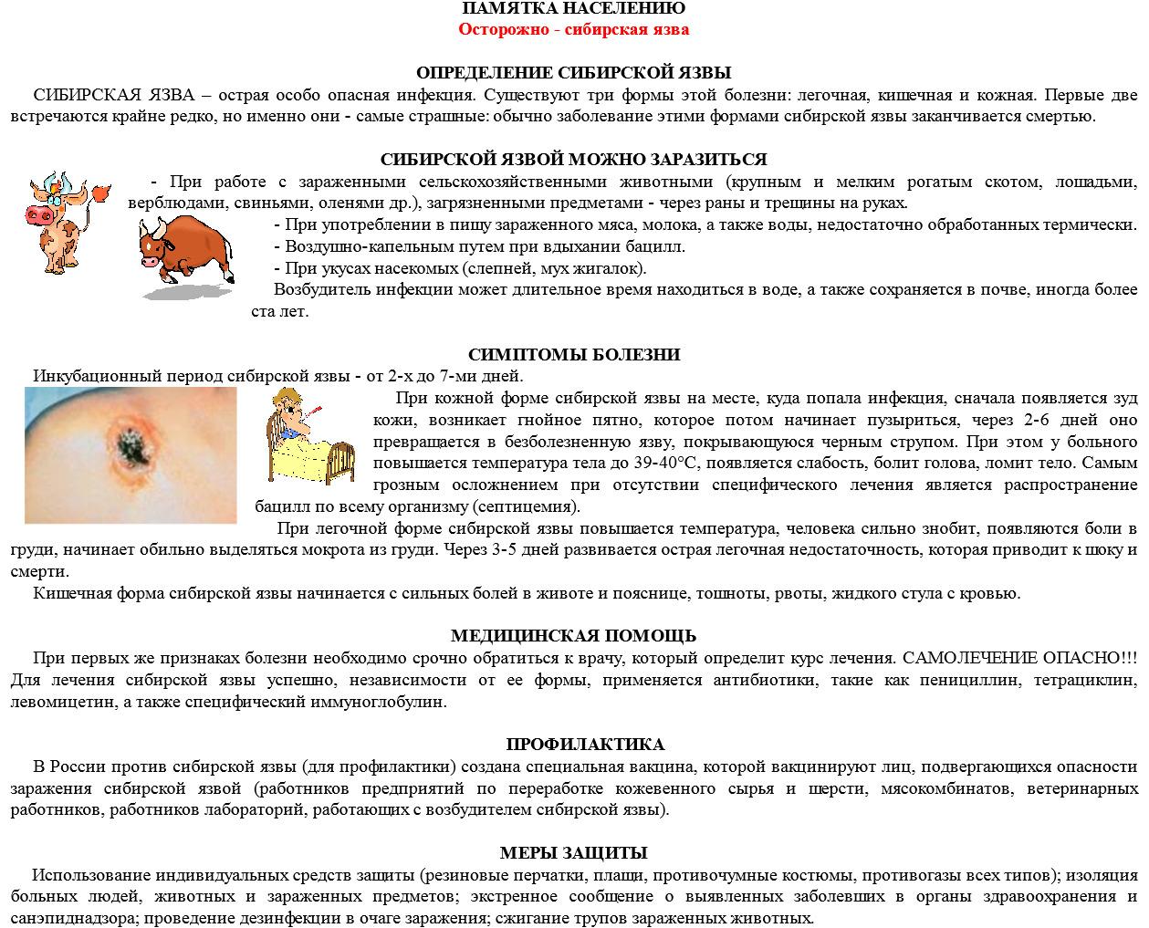 Почему дохнут куры: как определить причину, что делать и как их лечить? Рейтинг смертельных и опасных заболеваний