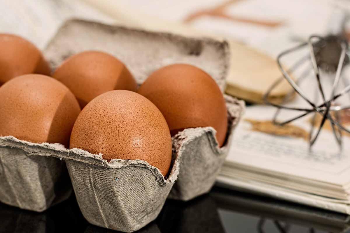 Топ-10 интересных фактов о куриных яйцах, которых вы не знали