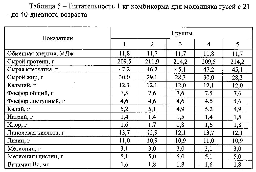 Чем кормить уток летом и зимой, виды корма и рацион потребления