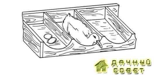 Размер гнезда для утки