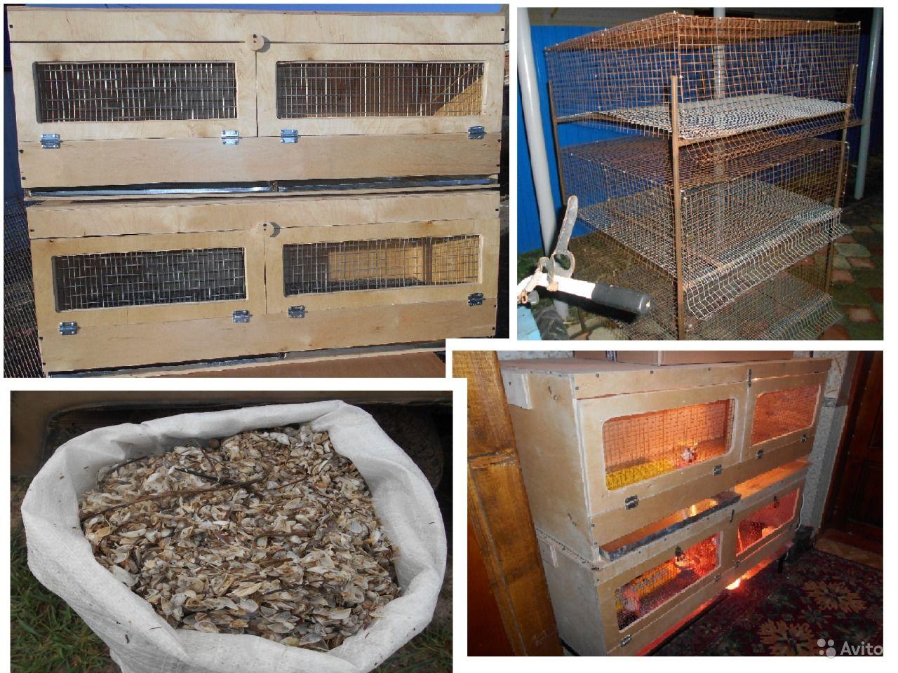 Из чего сделать брудер для цыплят быстро и бесплатно