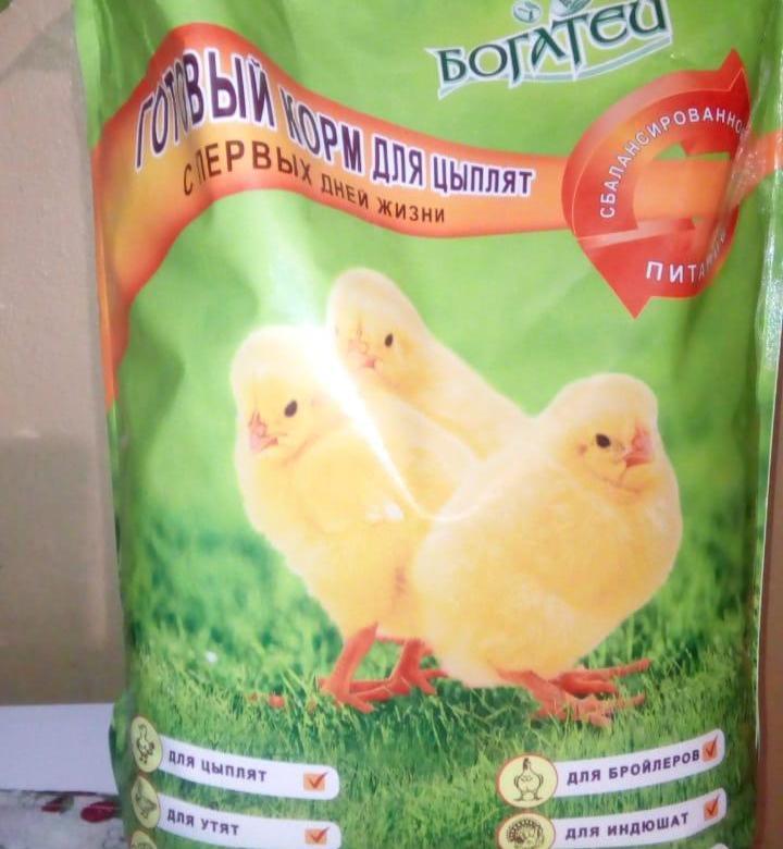 Откорм бройлерных цыплят – выбор комбикорма