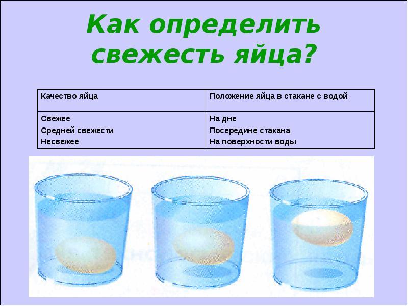 Как определить свежесть куриного яйца дома или при покупке