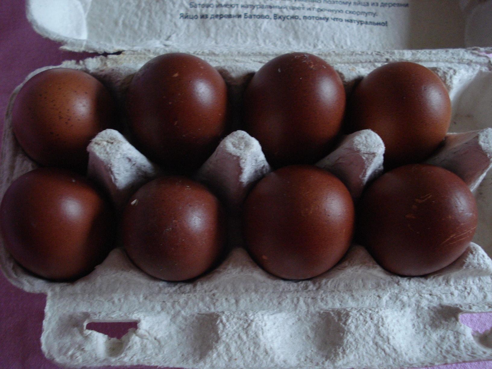 Маран - мясо-яичная порода кур. Описание, содержание и уход, кормление, яйценоскость, инкубация