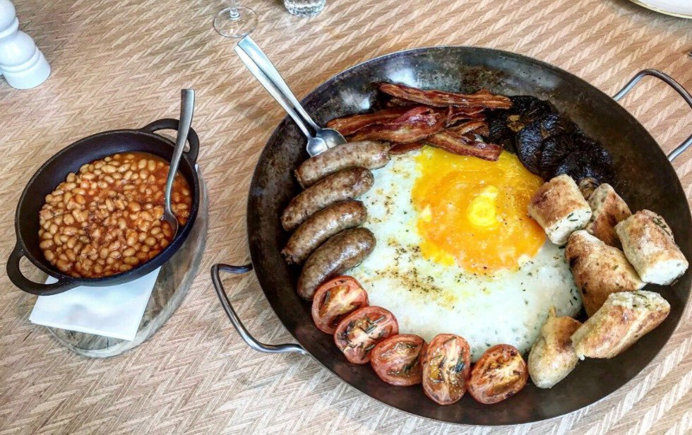 Яйца фазанов – полезные свойства, калорийность, сравнение с яйцами других птиц