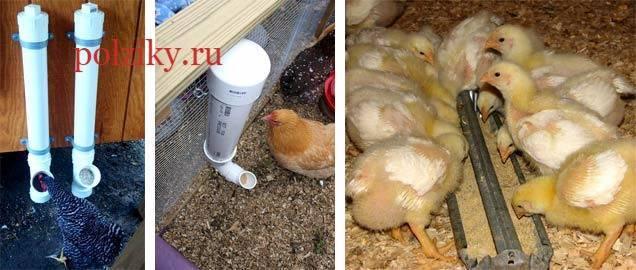 Как сделать кормушки для цыплят своими руками