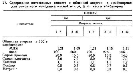 Бройлер-61 - мясо-яичный кросс кур. Описание, характеристика, выращивание и уход, кормление