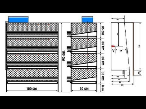 Делаем клетки для перепелов: размеры, чертежи, инструкция