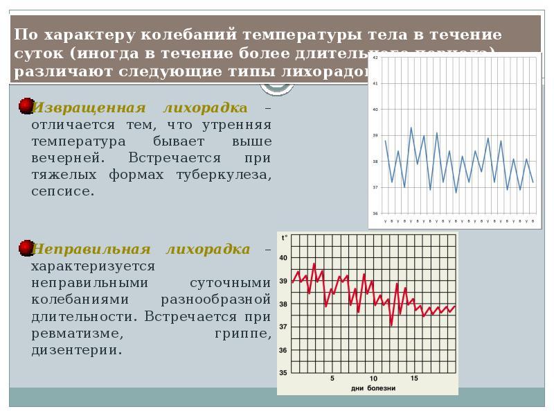 Какая температура тела у курицы и как ее измерить? Причины повышения и способы неотложной помощи