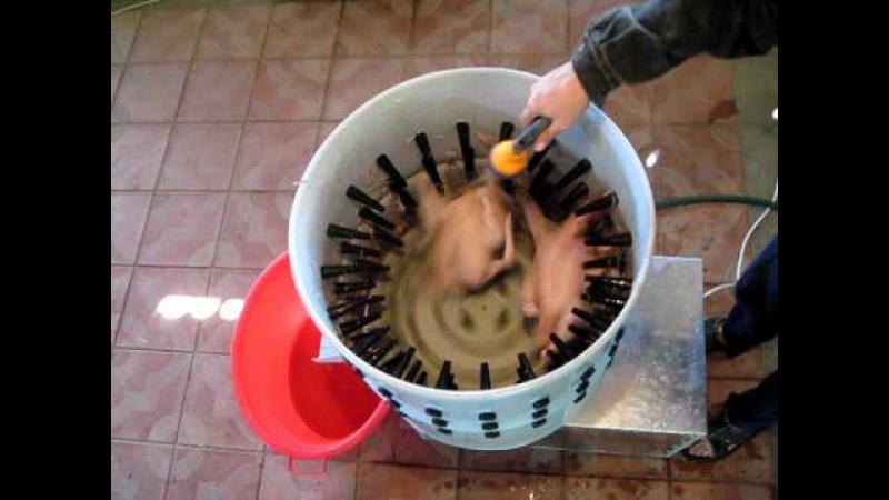 Как ощипывать утку: методы и способы