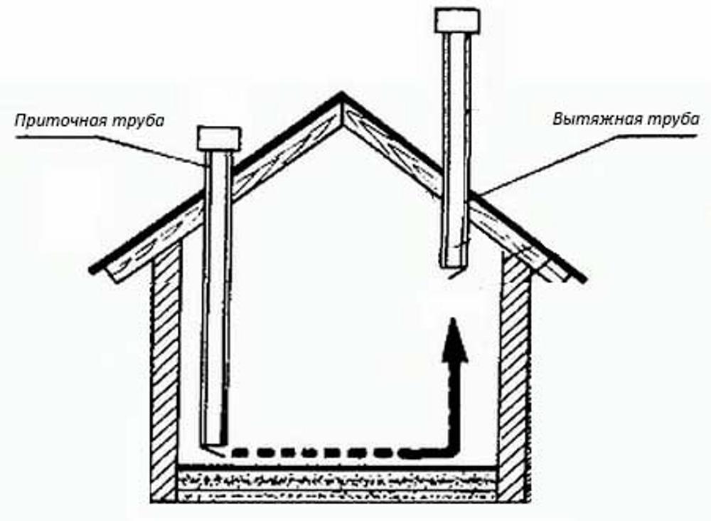 Вентиляция в курятнике – как сделать и зачем она нужна?