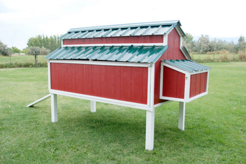 Маленькие курятники фото — 50 идей для дачи и сада