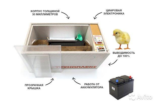 Рейтинг инкубаторов для яиц. Обзор моделей с автоматическим поворотом и регулировкой температуры
