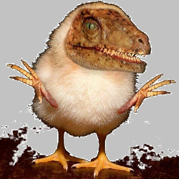 Курица динозавр или кудахтающий курозавр T-Rex