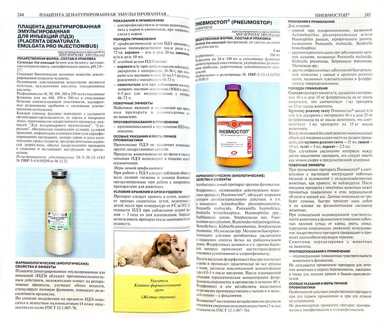 Пневмостоп-О: инструкция по применению в ветеринарии, дозировки для кур и свиней