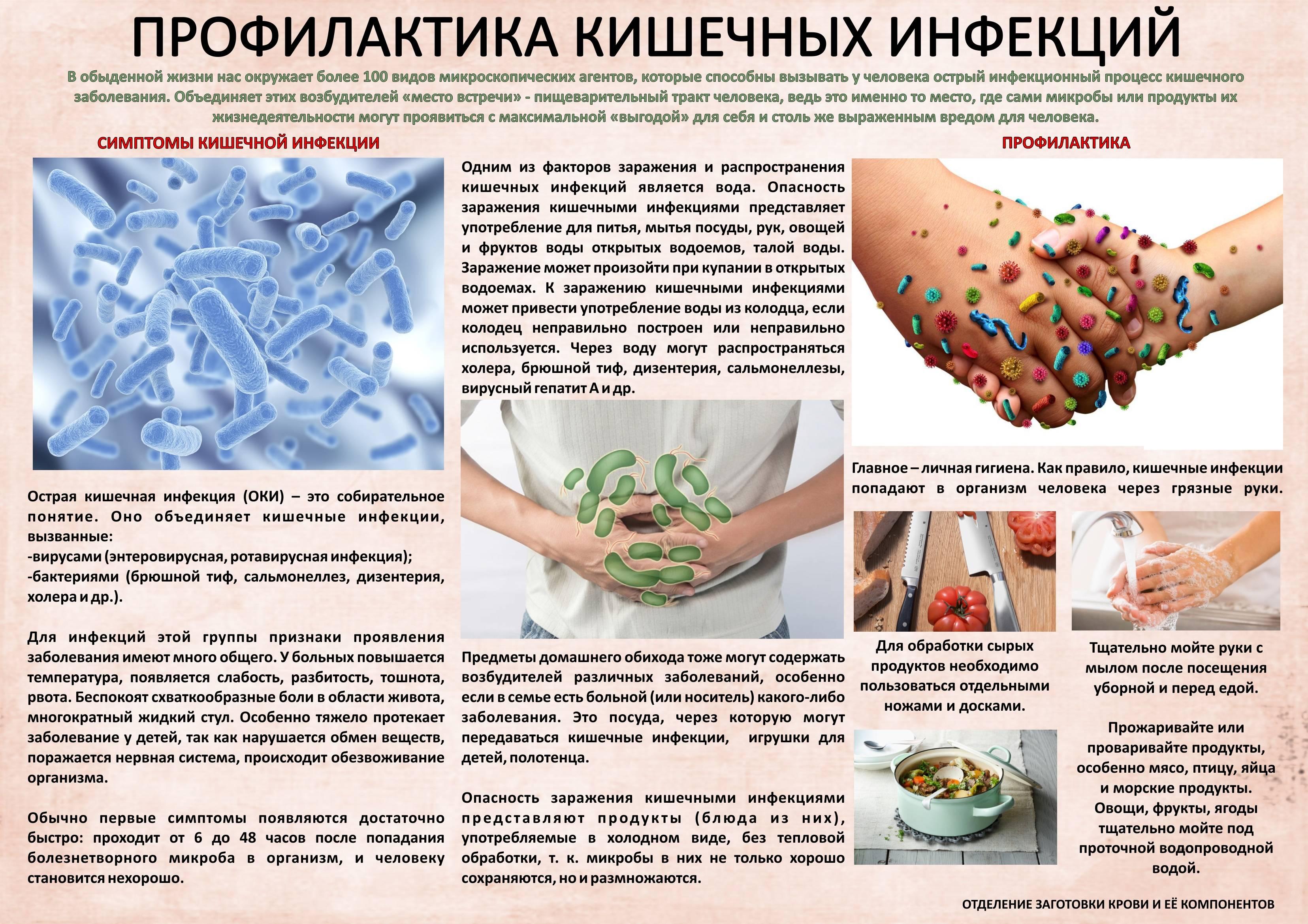 Эгоцин 20 – инструкция по применению антибиотика в ветеринарии