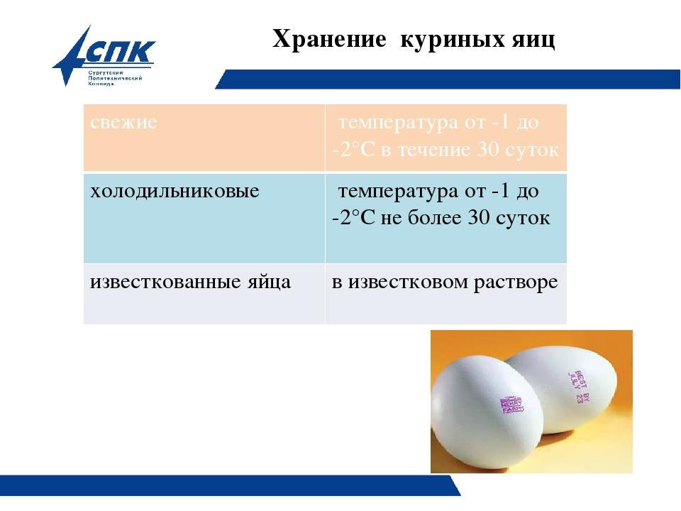 Как хранить инкубационное яйцо кур в домашних условиях до закладки в инкубатор?